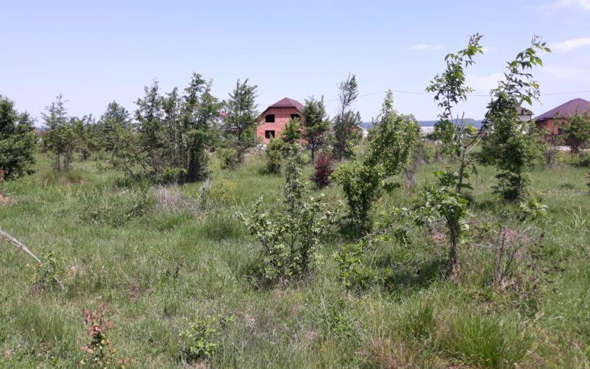 16(20) Земельный участок в Апшеронске